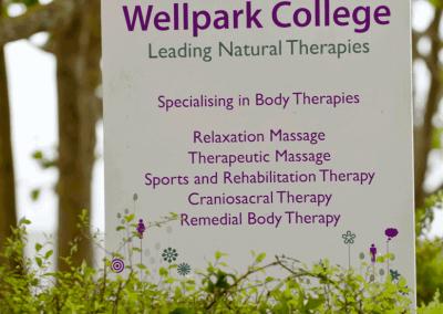 Wellpark Signage Design