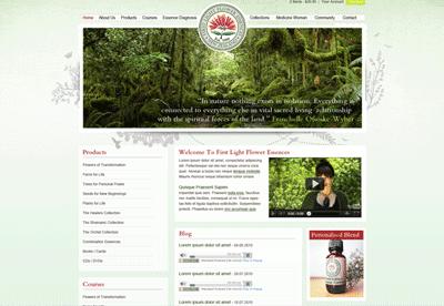First Light Website Design